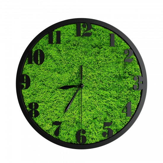 Годинник з мохом дизайнерський А03 / Диаметр 25 см