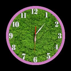 Годинник з мохом дизайнерський А06 / Диаметр 25 см