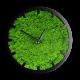 Годинник з мохом дизайнерський А11 / Диаметр 25 см