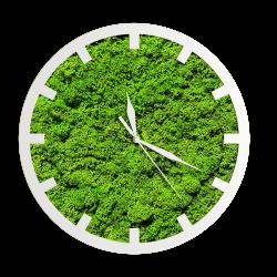 Годинник з мохом дизайнерський А13 / Диаметр 25 см