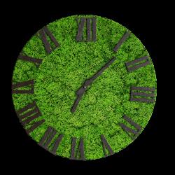 Годинник з мохом дизайнерський А14 / Диаметр 25 см